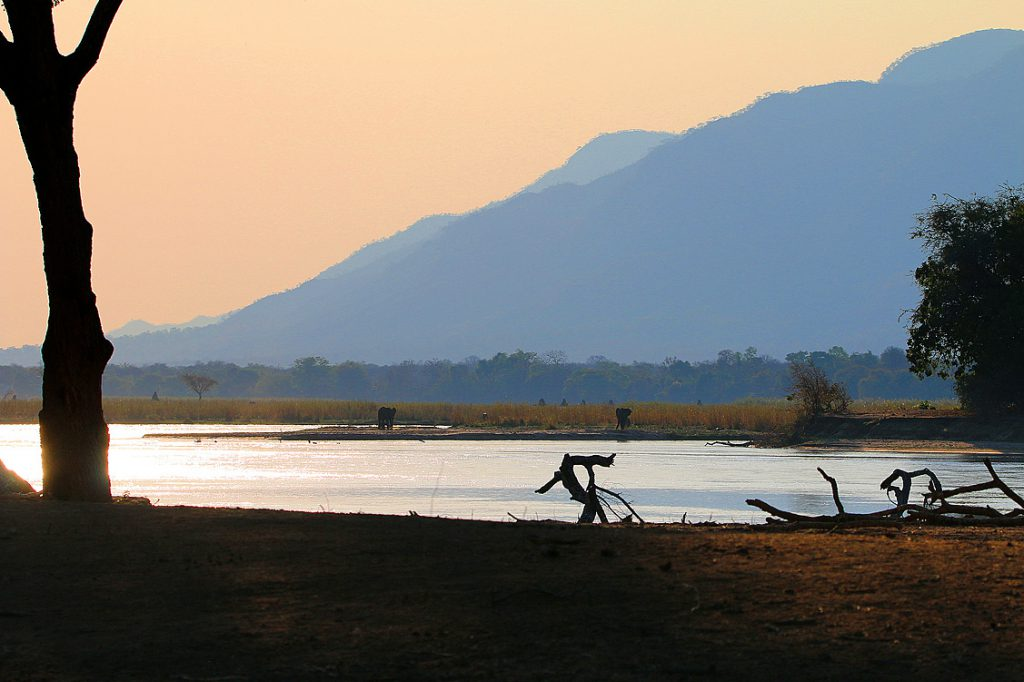 Gwaya, Mana Pools NP