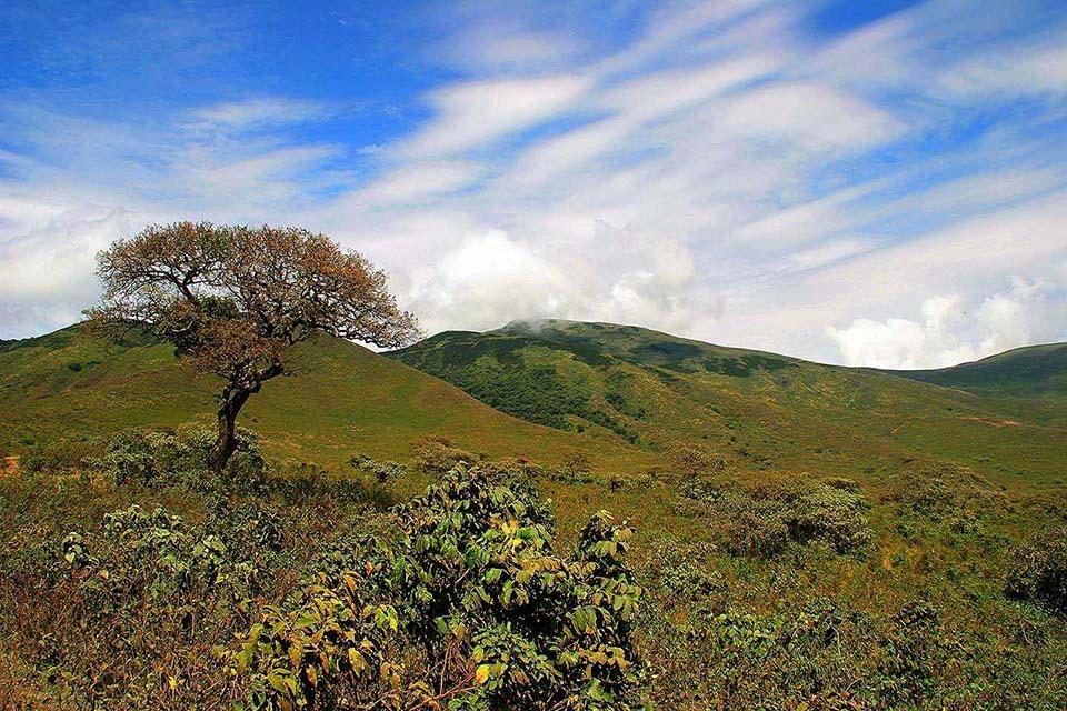 Im Rift Valley