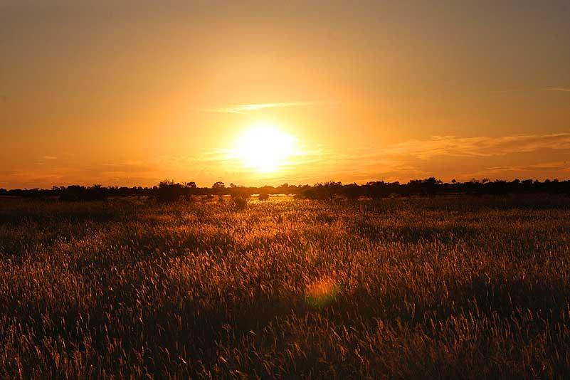 Sonnenuntergang, Central Kalahari GR