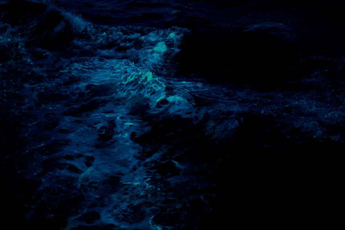 Biolumineszenz Meeresleuchten
