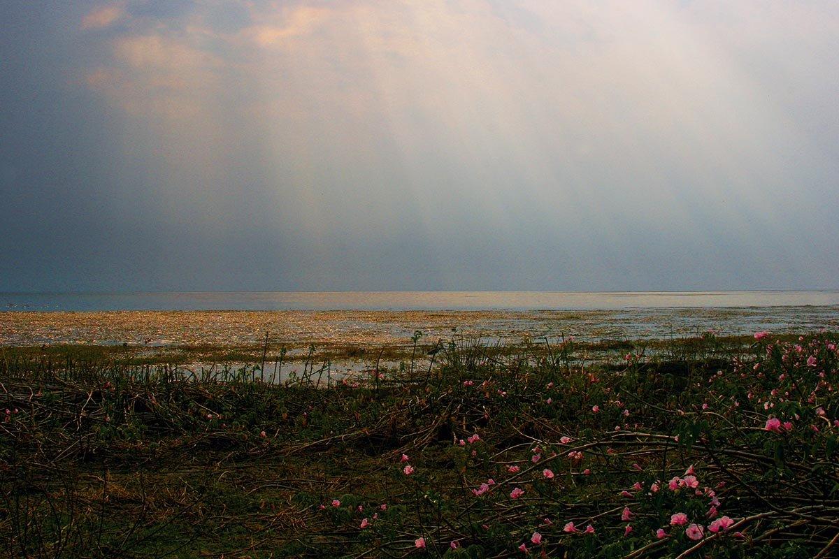Sonnenuntergang im Lochinvar NP
