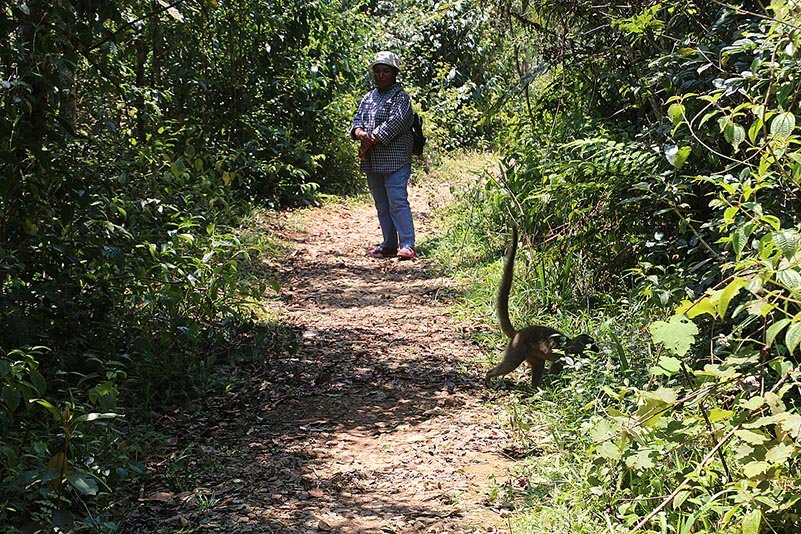 VOIMMA Community Reserve